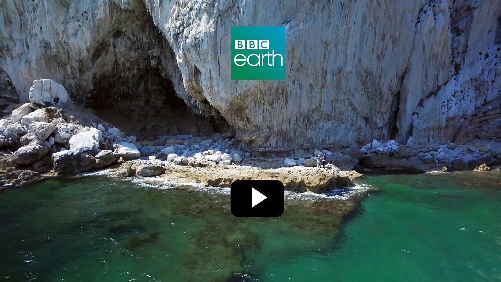 Documental BBC Earth